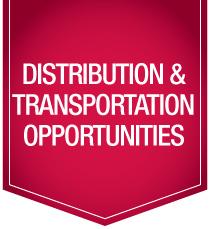 category distribution